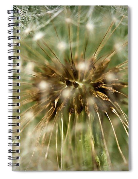 Dandelion Seed Head Spiral Notebook