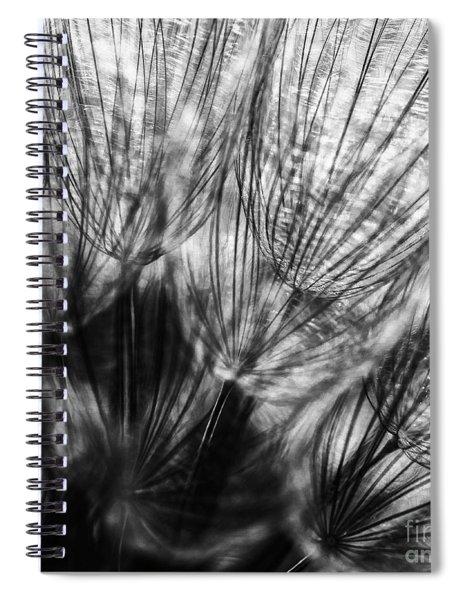 Dandelion Seeds I Spiral Notebook