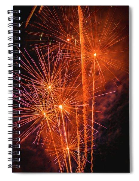 Dandilion Wannabes Spiral Notebook