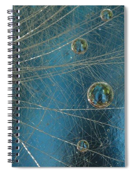 Dandy Drops Spiral Notebook
