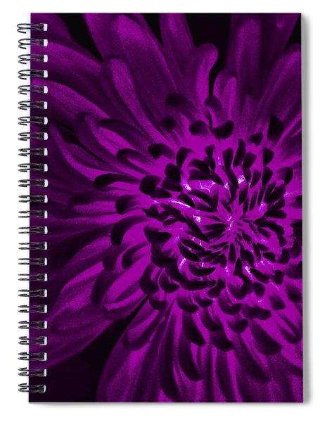 Dark And Wily Spiral Notebook