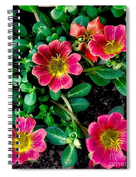 Dark Pink Purselane Flowers Spiral Notebook