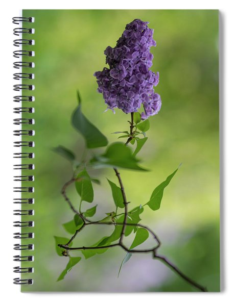 Dark Violet Lilac Spiral Notebook