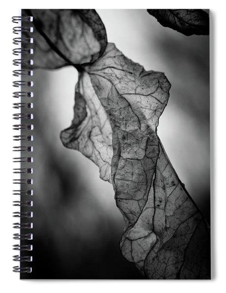 Fragile Leaf Bw Spiral Notebook