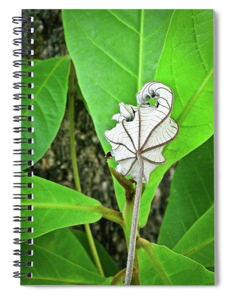 Dead Leaf Live Leaf Spiral Notebook