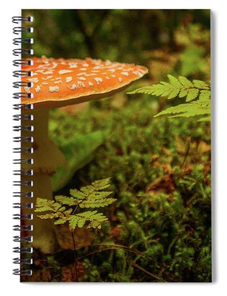 Death Cap Spiral Notebook