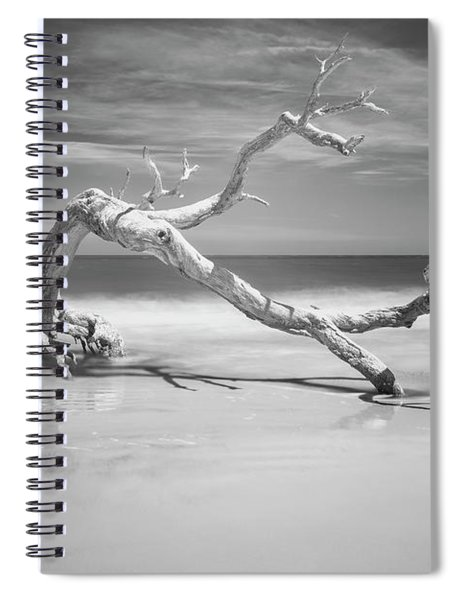 Death Of A Tree Spiral Notebook
