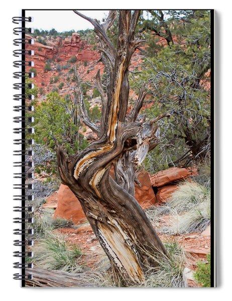 Decorative Dead Tree Spiral Notebook