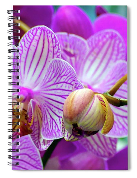 Decorative Fuschia Orchid Still Life Spiral Notebook