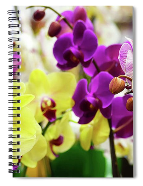 Spiral Notebook featuring the photograph Decorative Orchids Still Life C82418 by Mas Art Studio