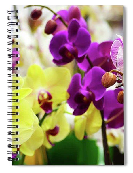 Decorative Orchids Still Life C82418 Spiral Notebook by Mas Art Studio