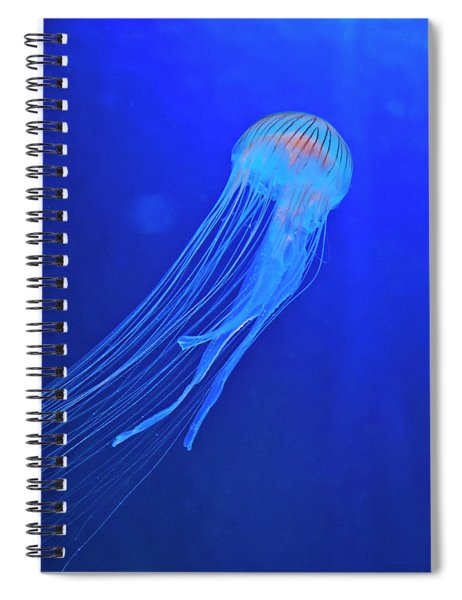 Deep Blue Sea Spiral Notebook