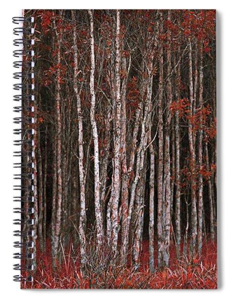 Deep Forest 2 Spiral Notebook