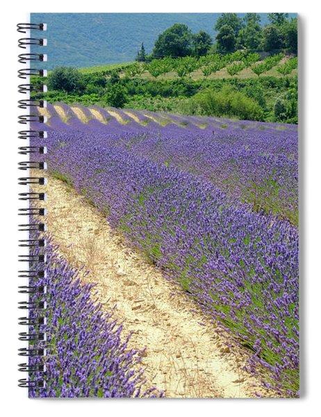 Deep Purple Spiral Notebook