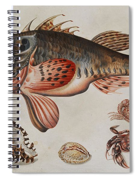 Deep-sea Fish, Crabs And Sea Snails Spiral Notebook