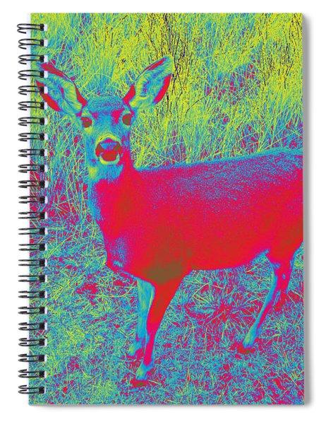 Deer #3 Spiral Notebook