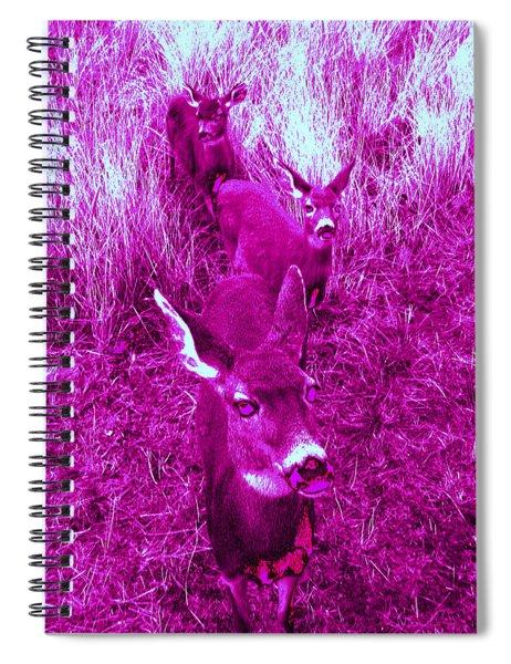Deer #4 Spiral Notebook