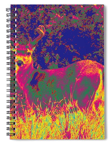Deer #8 Spiral Notebook