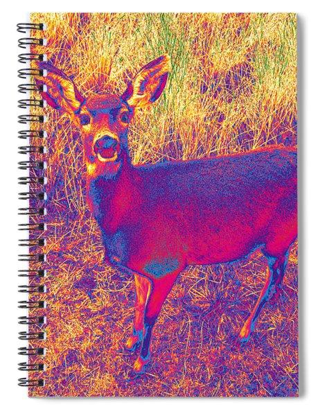 Deer #9 Spiral Notebook