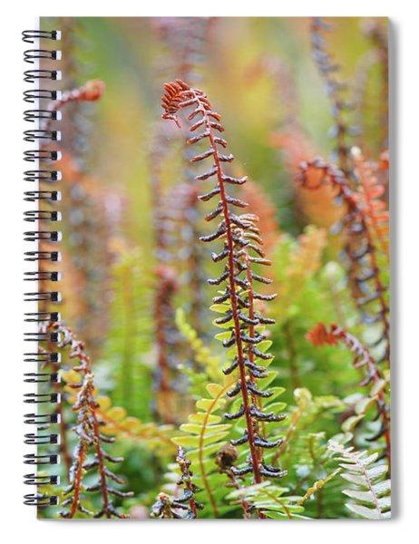Blechnum Penna-marina Spiral Notebook
