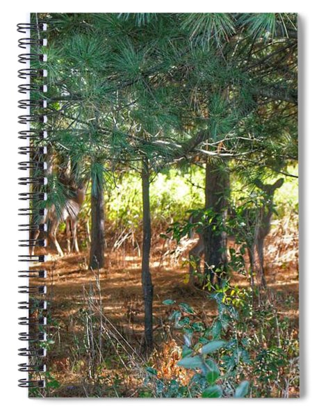 1011 - Deer Of Croswell I Spiral Notebook