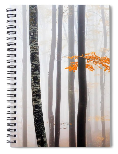 Delicate Forest Spiral Notebook