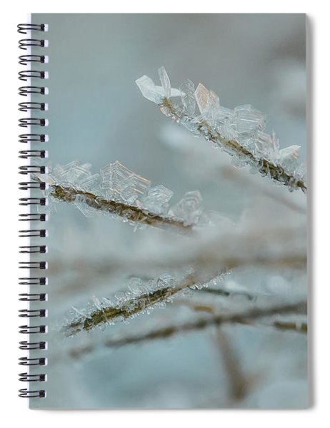 Delicate Morning Frost  Spiral Notebook
