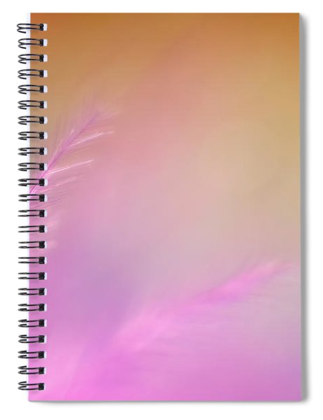 Delicate Pink Feather Spiral Notebook