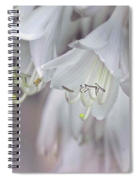 Delicate White Flowers Spiral Notebook