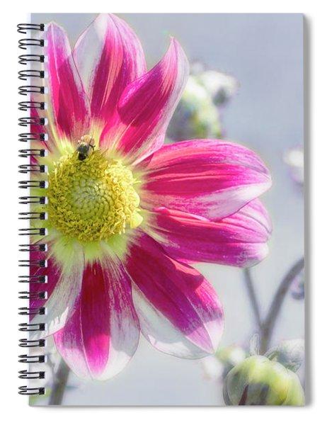 Delicious Dahlia Spiral Notebook