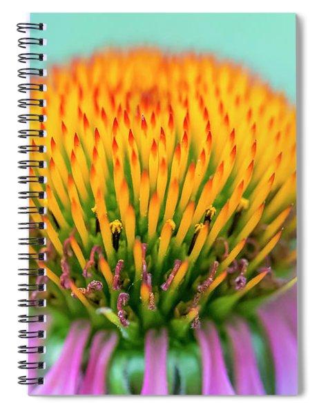 Depth Of Field Spiral Notebook