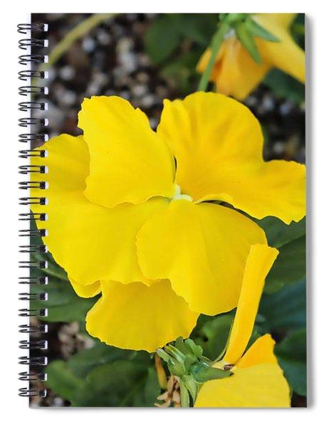Floral Desert Beauty Spiral Notebook