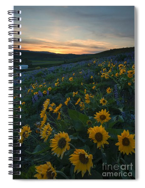 Desert Gold Spiral Notebook