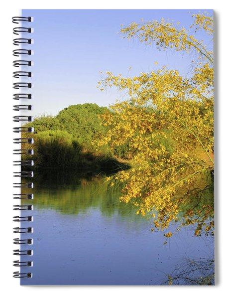 Desert Oasis Spiral Notebook