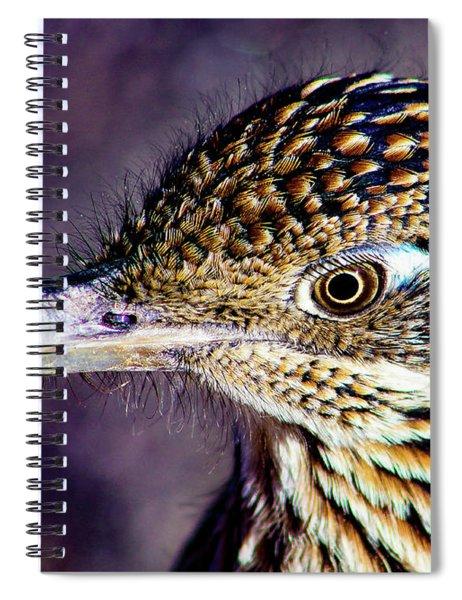 Desert Predator Spiral Notebook