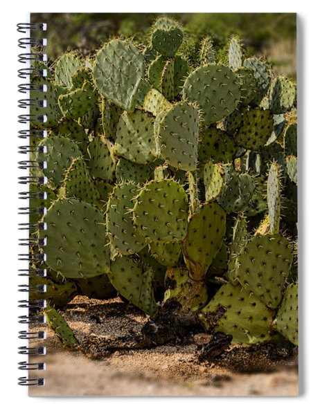 Desert Prickly-pear No6 Spiral Notebook
