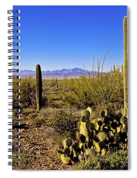 Desert Spring Spiral Notebook
