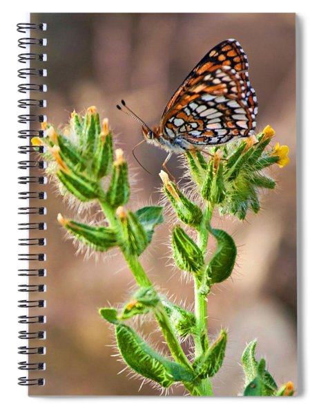 Desert Spring Life Spiral Notebook