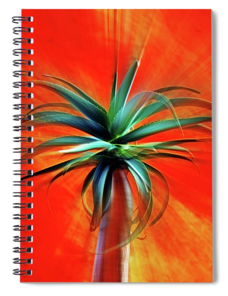 Desert Sunset Moment Spiral Notebook