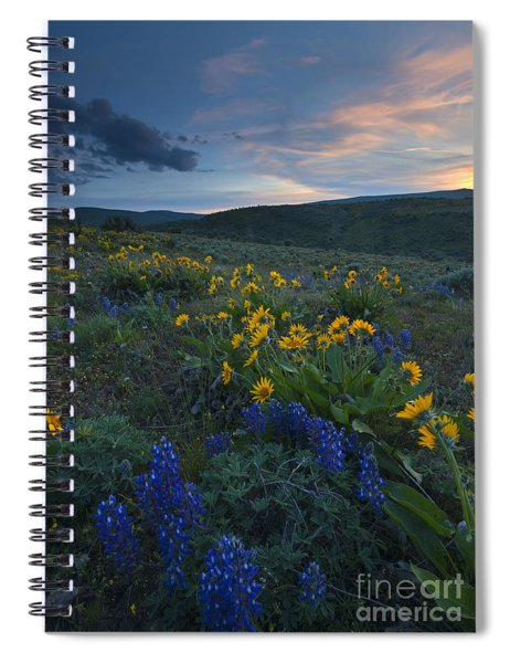 Desert Wildflower Sunset Spiral Notebook