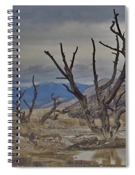 Desolate Beauty Spiral Notebook
