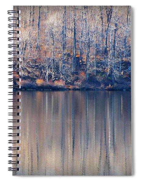 Desolate Splendor Spiral Notebook