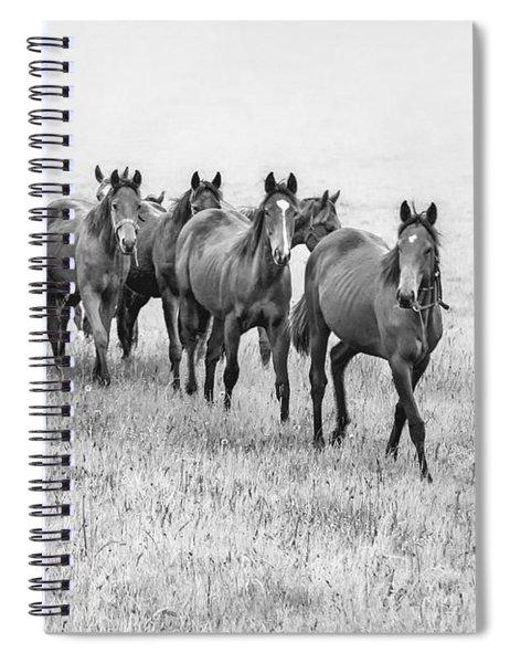 Destiny Of Freedom Spiral Notebook