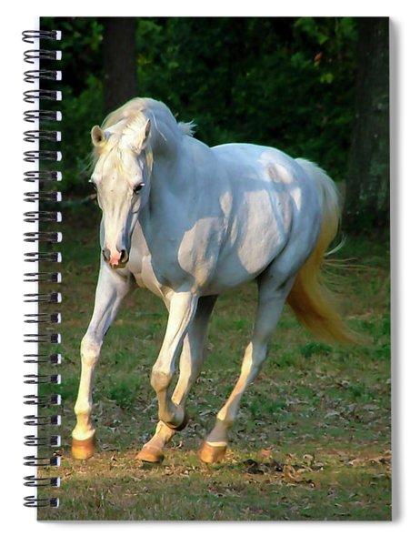 Deva Spiral Notebook