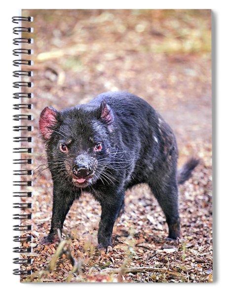Devil's Ground Spiral Notebook