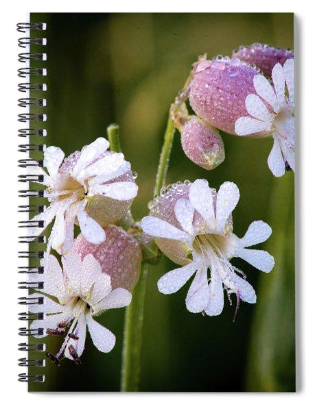 Dewy Morning Spiral Notebook