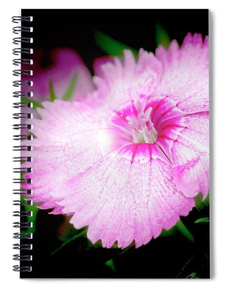 Dianthus Flower Spiral Notebook