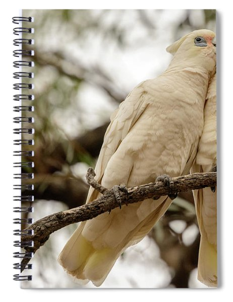 Did You Hear The One About ... Spiral Notebook