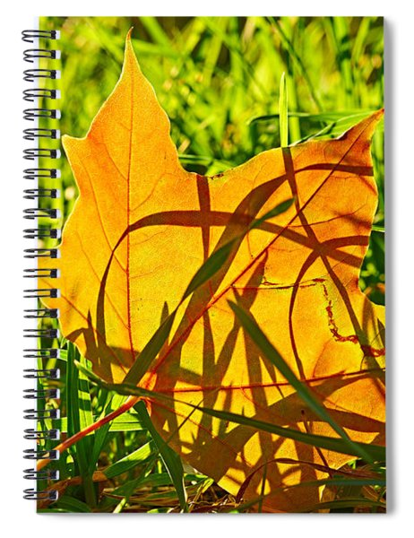 Different Level Spiral Notebook