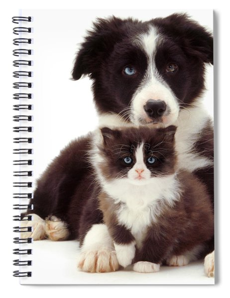 Different Strokes - Same Love Spiral Notebook